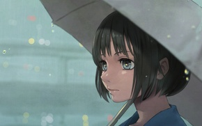 Picture look, girl, face, umbrella, anime