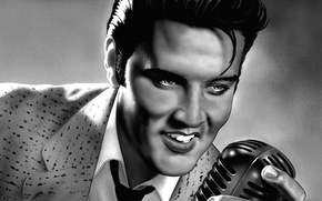 Picture figure, art, actor, microphone, pencil, musician, singer, sings, Elvis Presley, Elvis Presley, rock-n-roll, producer, rock-n-roll, …