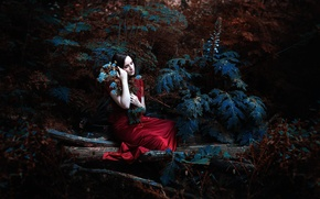 Picture forest, girl, dress, Ronny Garcia