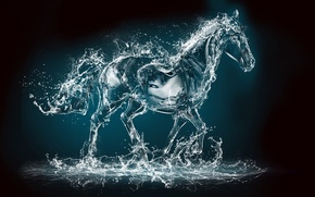Picture water, squirt, rendering, animal, horse
