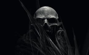Picture fiction, skull, art, black background