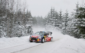 Picture race, Winter, Snow, Tree, Citroen, Track, Red Bull, DS3, Rally, Blur, Total, S. Loeb