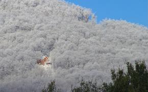 Wallpaper mountain, trees, house, slope
