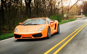Picture road, trees, orange, markup, gallardo, lamborghini, trees, orange, Lamborghini, Gallardo, yellow stripes, lp550-2