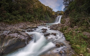 Picture forest, river, stones, waterfall, New Zealand, New Zealand, Tawhai Falls