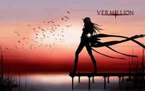 Picture grass, water, girl, sunset, birds, silhouette, Vermillion