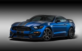 Wallpaper background, Mustang, Ford, Shelby, Ford, Mustang, the front, Muscle car, Muscle car, GT350R