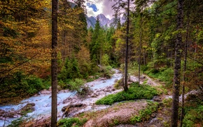 Picture forest, clouds, trees, mountains, stream, stones, rocks, Switzerland, Alps