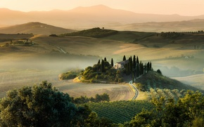 Picture summer, light, field, morning, Italy, Tuscany, August
