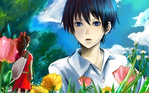 Picture the sky, grass, girl, clouds, trees, flowers, anime, art, guy, Arietti from the country of …
