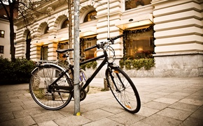 Wallpaper bike, street, the sidewalk, street, showcase, Bicycle