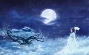 Picture girl, stars, clouds, night, The moon, Sakura, temple, kimono, scroll