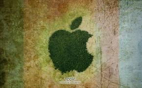 Picture grass, background, Apple, Corporation, progress