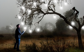 Picture tree, people, the situation, light bulb