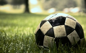Picture grass, macro, lawn, football, the game, the ball, sport, game, match, soccer