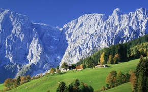 Wallpaper forest, mountains, nature, home, Austria, village, meadows