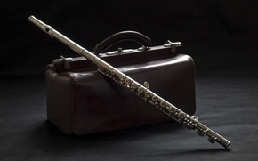 Picture background, suitcase, flute
