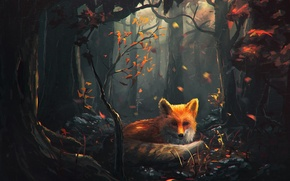 Picture forest, look, trees, art, Fox