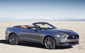 Picture mustang, ford, 2014
