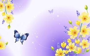 Picture flowers, nature, butterfly, Shine, plants, kidney, purple background
