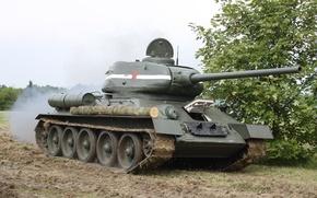 Picture tank, legend, Soviet, average, T-34-85