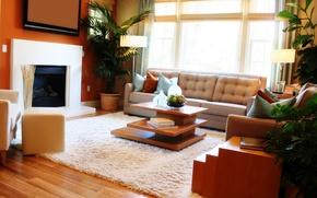 Picture light, room, sofa, interior, plants, pillow
