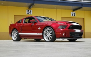 Picture Shelby, GT500, Super
