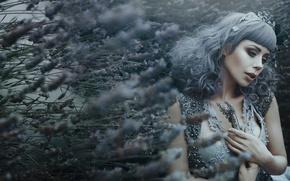 Picture fantasy, lavender, girl, Bella Kotak