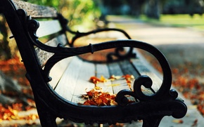 Picture autumn, leaves, bench, nature, Park