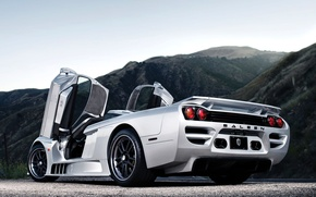 Picture machine, silver, Saleen, supercar, rear view