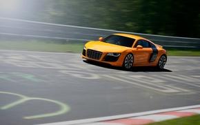 Picture Audi, Orange, Speed, Orange, Speed, Supercar, Track, Supercar