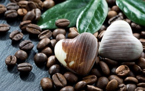 Picture coffee, chocolate, candy, coffee beans, grain, chocolates