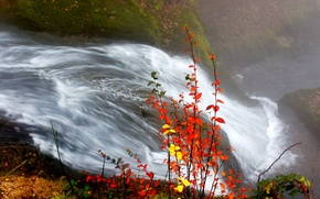 Wallpaper autumn, leaves, river, Waterfall