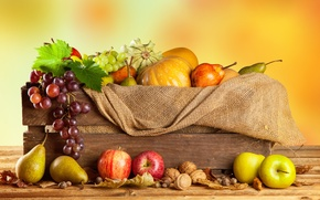 Picture autumn, apples, harvest, grapes, pumpkin, fruit, nuts, box, vegetables, pear, burlap
