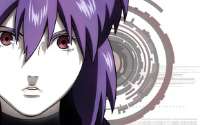 Picture look, girl, face, background, red eyes, Ghost in the Shell, purple hair, The Fireworks Kusanagi, …