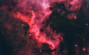 Wallpaper Stars, Space, Dark, North America Nebula