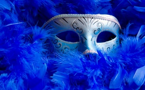 Picture blue, grey, feathers, mask, Venice, Different, masquerade