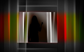 Picture color, silhouette, form