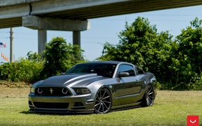 Picture Mustang, Ford, wheels, vossen