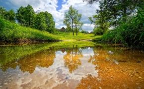 Picture summer, landscape, river