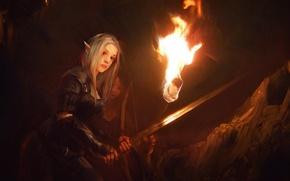 Picture look, fiction, sword, art, torch, elf, ears