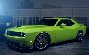 Picture Muscle, Dodge, Challenger, Hell, Car, Green, Color, Cat, American, SRT
