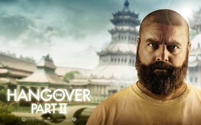 Wallpaper The Hangover Part 2, Zach Galifianakis, Zach Galifianakis, Bachelor party 2: From Vegas to Bangkok, ...