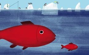 Picture sea, fish, picture