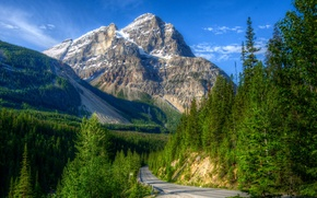 Picture road, greens, forest, the sky, the sun, trees, mountains, rocks, blue, treatment, Canada, Yoho National ...