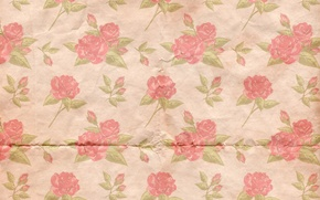 Picture background, roses, wallpaper, ornament, vintage, texture, floral, pattern, paper, floral
