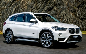 Picture BMW, white, crossover, F48, BMW