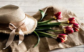 Picture hat, tulips, buds