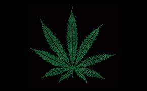 Wallpaper marijuana, words, sheet