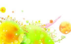 Wallpaper circles, plants, quirkiness